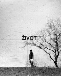 Život umjetnosti, 89, 2015, naslovnica / cover, Davor Sanvincenti, Versus, 2009