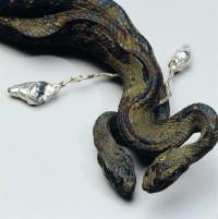 Dorothy Cross, Lover Snakes, 1995., ljubaznošću autorice i Kerlin Gallery